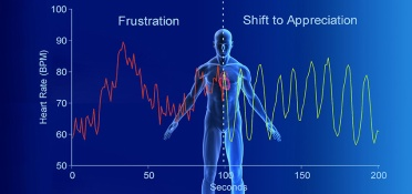 hmi-blog-article-explains-importance-of-heart-rate-variability-for-your-health